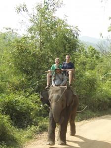 AvtR LvtR elephant
