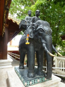 ElephantFinder